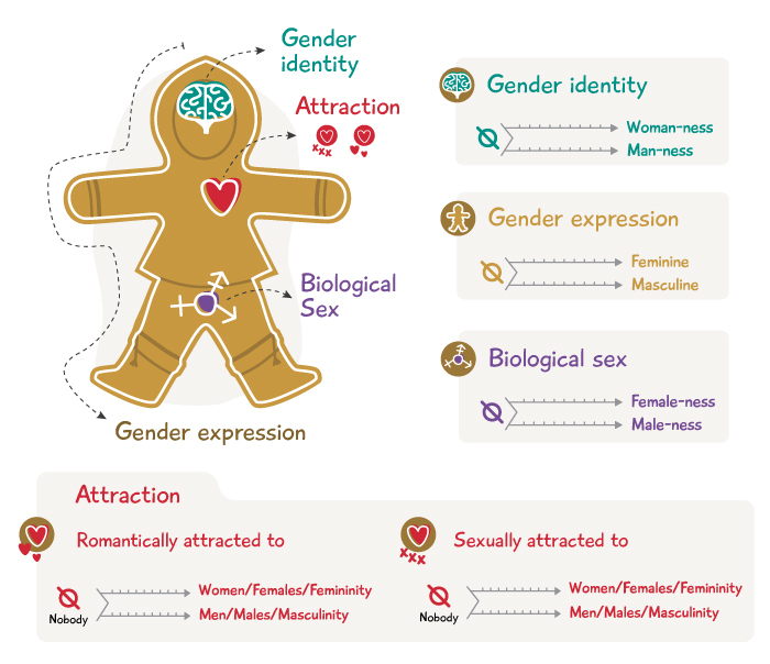 Gender identies transgender